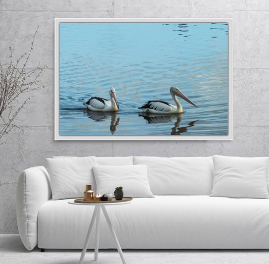 pelicans-water-framed-canvas-art